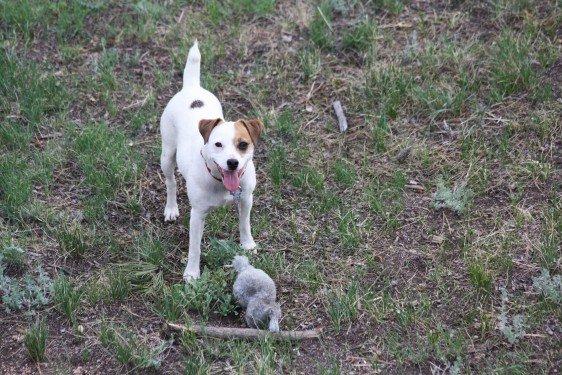 Chloe - With Bunny